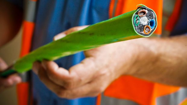 NBN and Mr Fluffy overreach remind us why governments should lead, not command